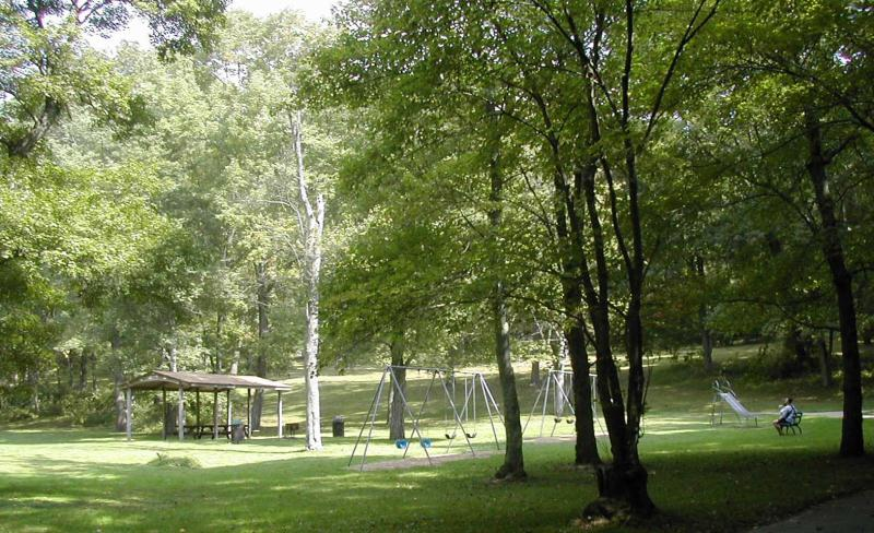 A Small Playground Area Surrounded by Tall Trees at Kent Park